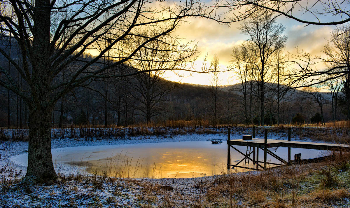 Pond at Winter